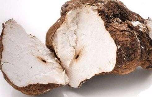 Poria Cocos Mushroom: 100g-5kg – Wolfiporia, White Poria, Fu Ling